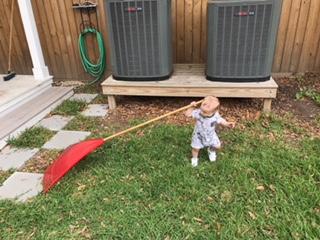 knox toddler